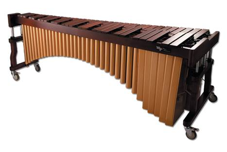 小木琴八音乐谱虫儿飞
