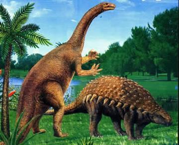 动物 恐龙 鹿 360